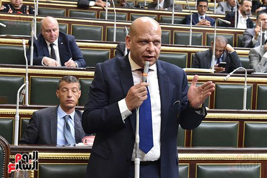 الجلسه العامه لمجلس النواب (13)