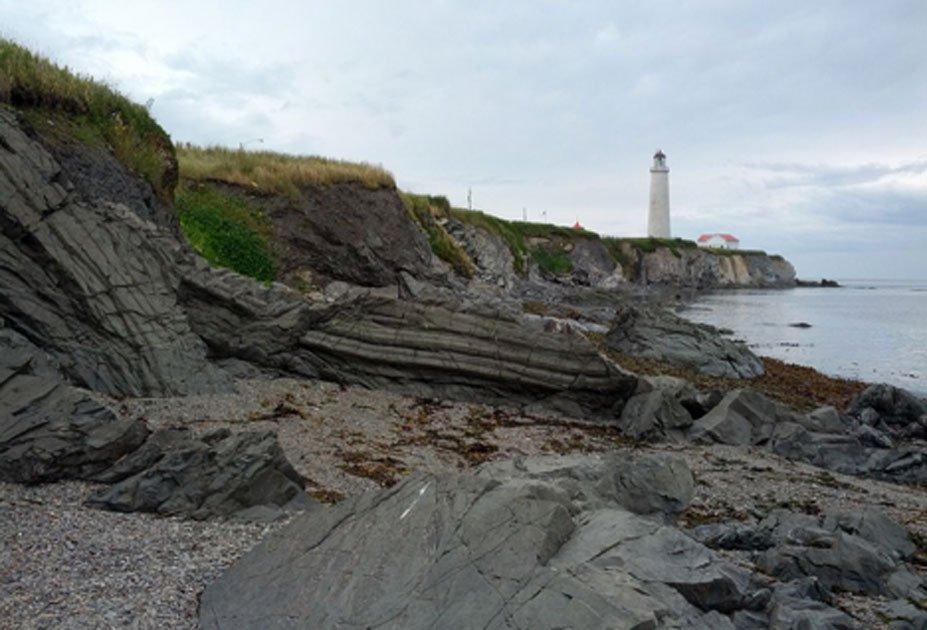 الشاطئ  (1)