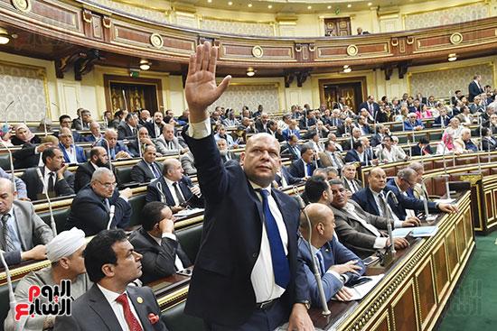 الجلسه العامه لمجلس النواب (5)