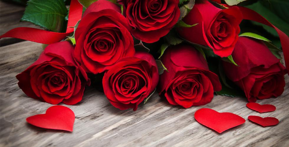 يوم الورد الاحمر (1)