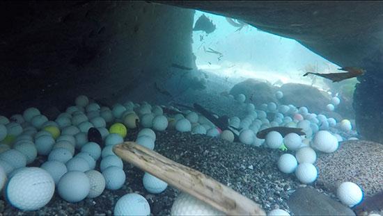 صور.. العشرات من كرات الجولف المفقودة على أرضية المحيط الهادئ (1)