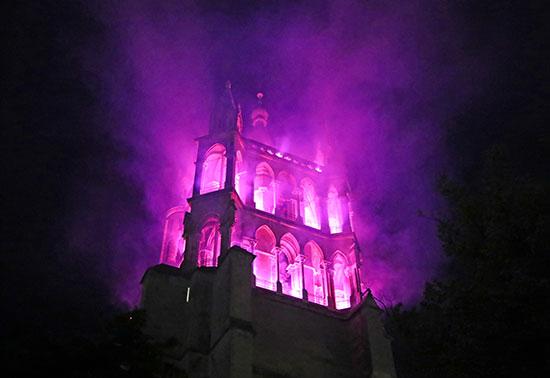 الكاتدرائية تتزين باللون الأورجوانى