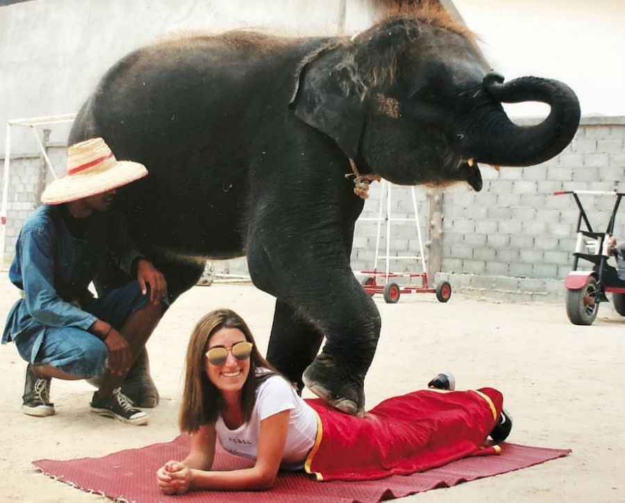 تدليك الفيل