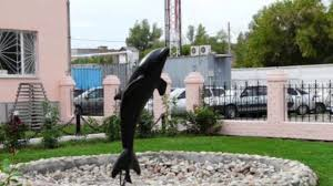 سجن الدولفين الأسود