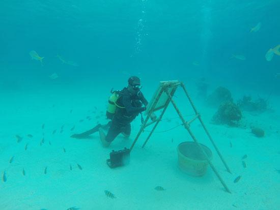 الفنان الكوبى منفردا بأحدى لوحاته فى أعماق البحر