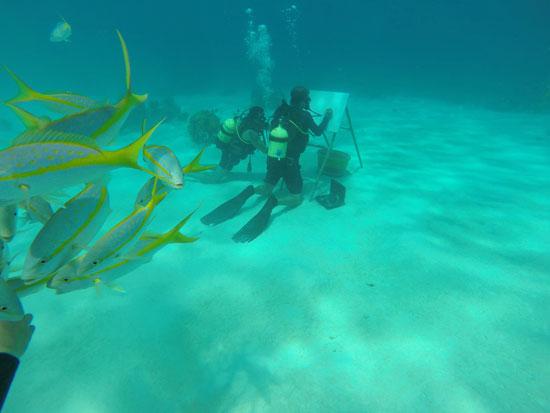 ساندور جونزاليس يبدع فى رسوماته تحت سطح البحر
