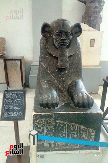 جانب-المسار-المخصص-للمكفوفين-فى-المتحف-المصرى-بالتحرير--(6)