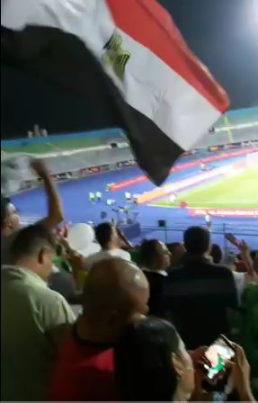 علم مصر فى مدرج الجزائر