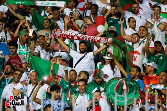 جمهور الجزائر  (4)