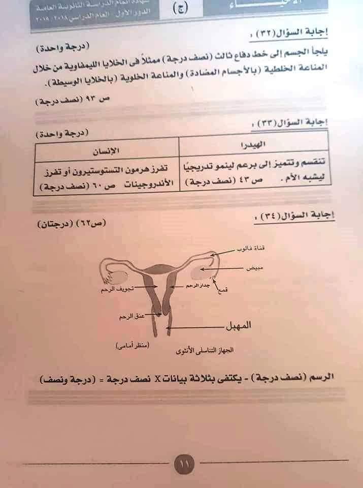 نموذج إجابة امتحان مادة الأحياء (6)