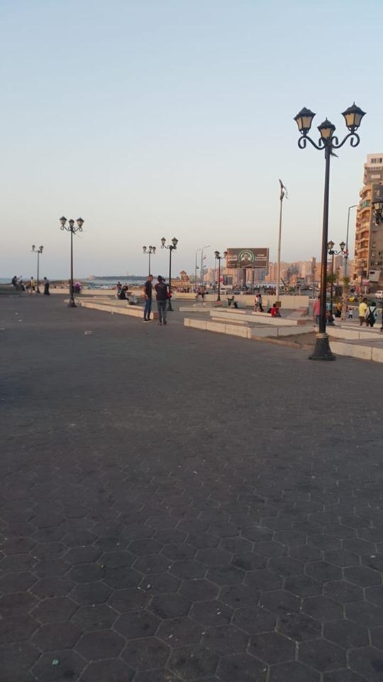 إزالة الاشغالات وانارة الطرق بالاسكندرية (4)