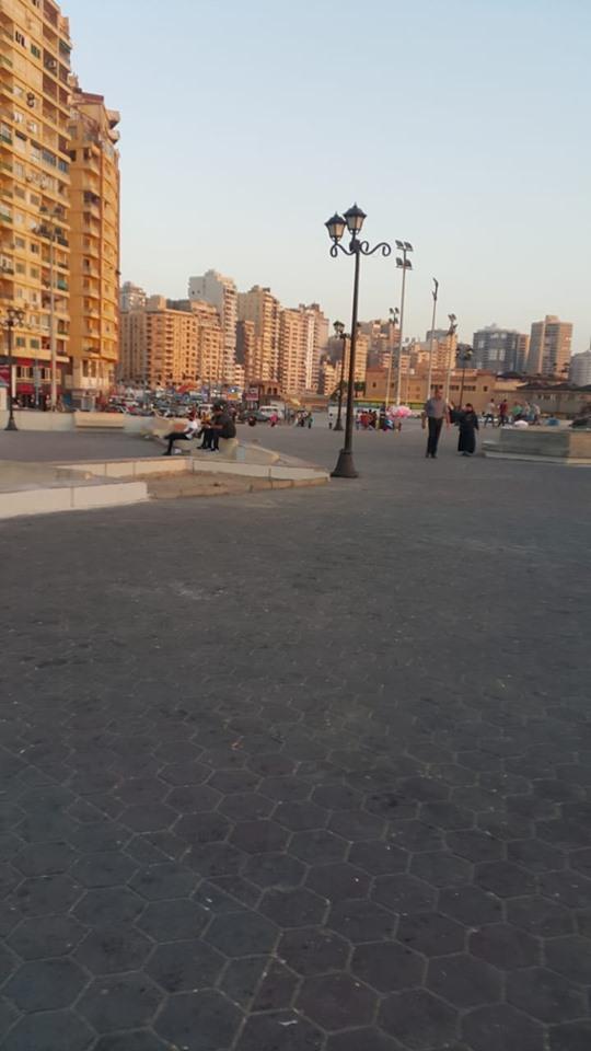 إزالة الاشغالات وانارة الطرق بالاسكندرية (6)