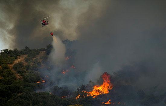 النيران تلتهم الأشجار ومحاولات للسيطرة