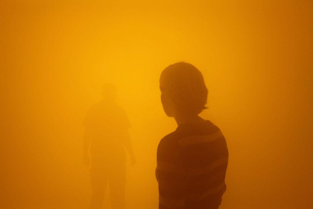 أولافور إلياسون ، داين بلاسنر راكب (راكبك الأعمى) (2010) منظر التثبيت في متحف آركن للفن الحديث ، كوبنهاغن ، 2010. تصوير ثيلو فرانك ستوديو أولافور إلياسون