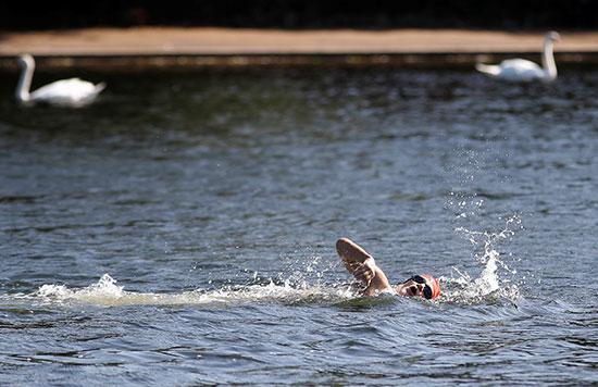 السباحة لمواجهة الحرارة