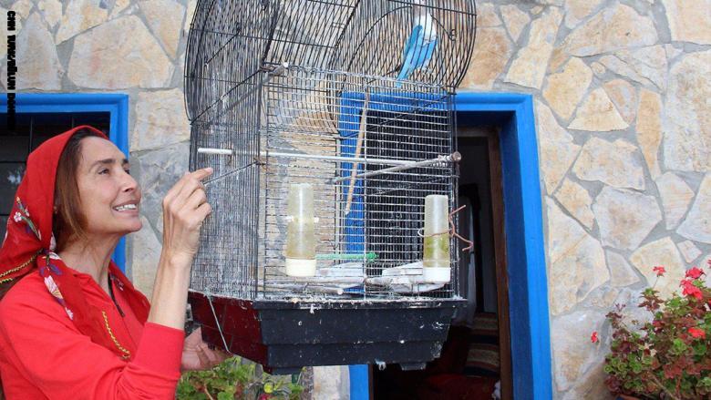 بيلون دهمن مع العصافير