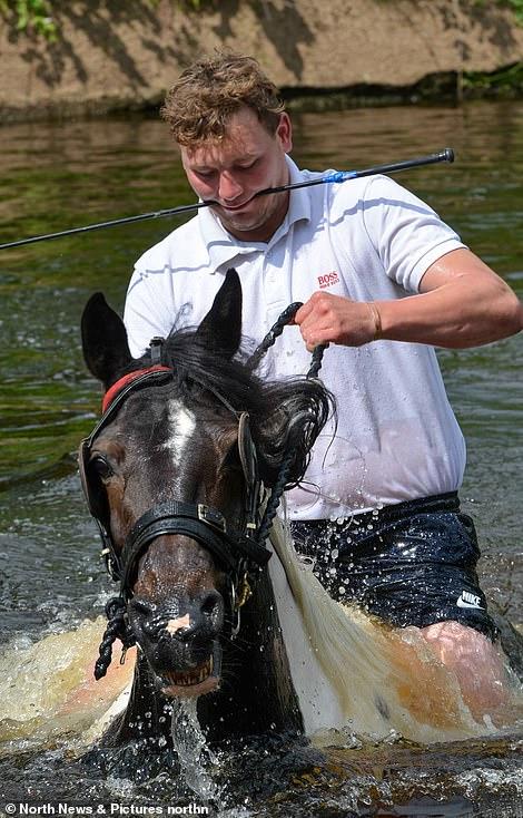 أكبر معرض للخيول فى بريطانيا (3)