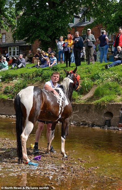 أكبر معرض للخيول فى بريطانيا (15)