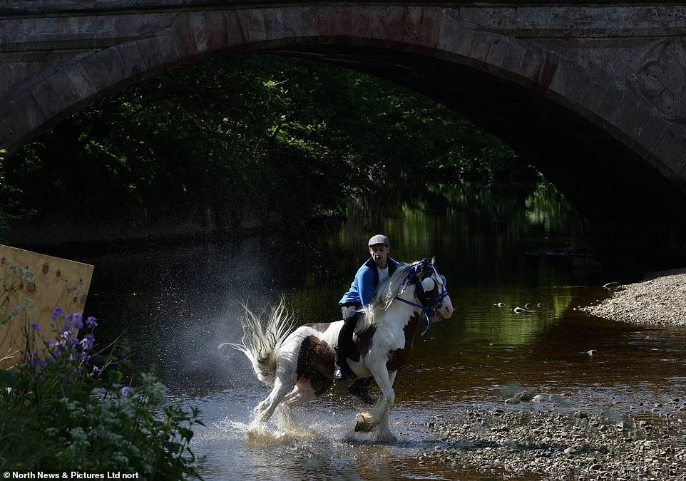 أكبر معرض للخيول فى بريطانيا (12)