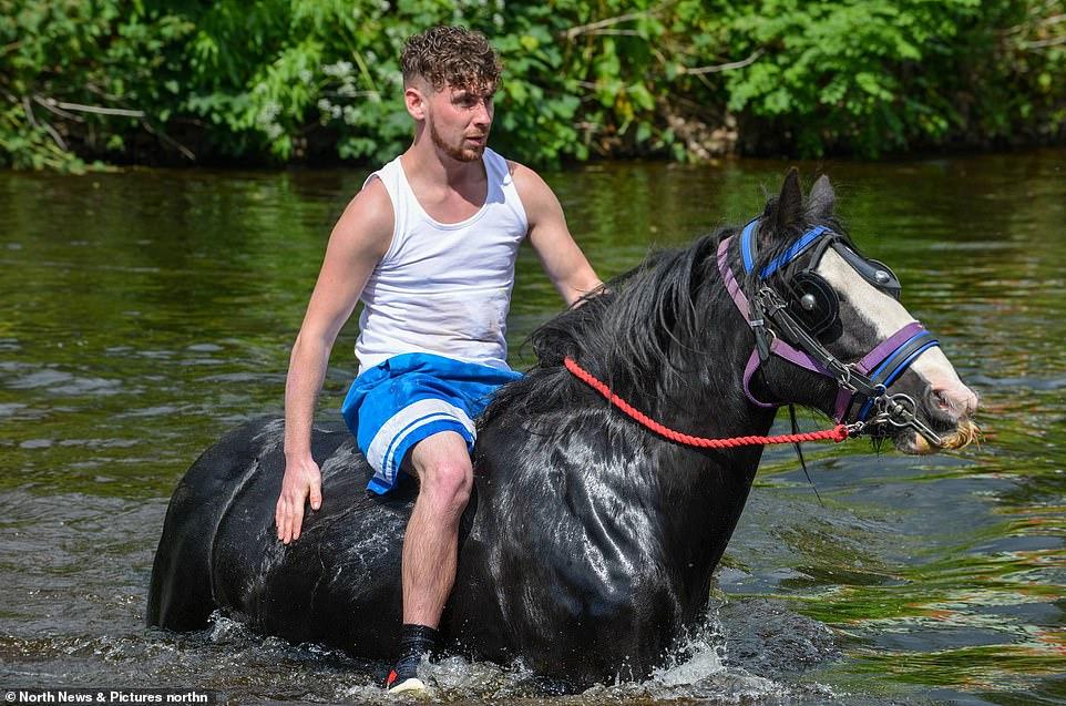 أكبر معرض للخيول فى بريطانيا (1)