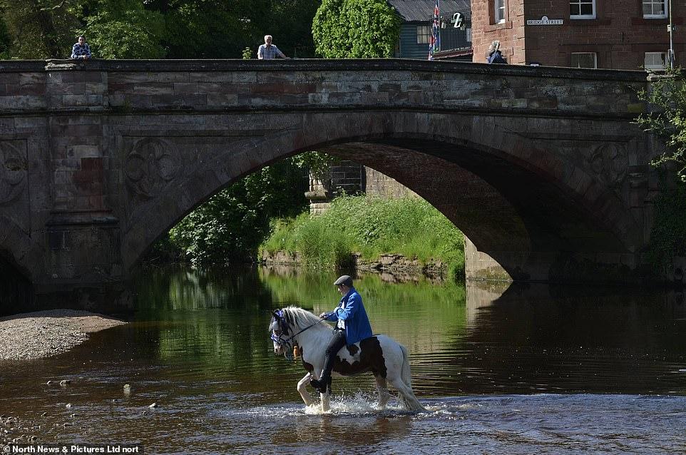 أكبر معرض للخيول فى بريطانيا (13)