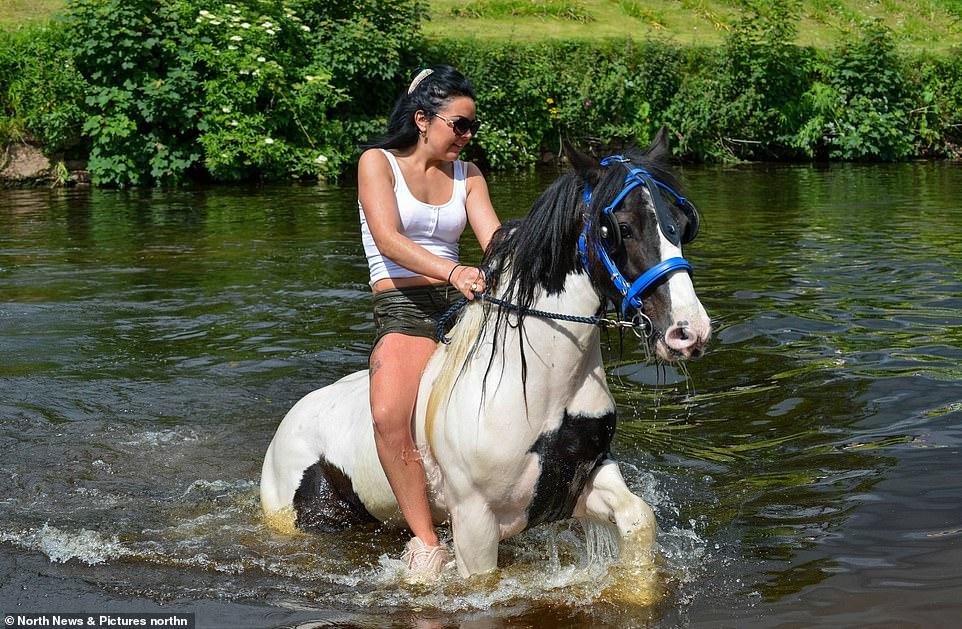 أكبر معرض للخيول فى بريطانيا (16)