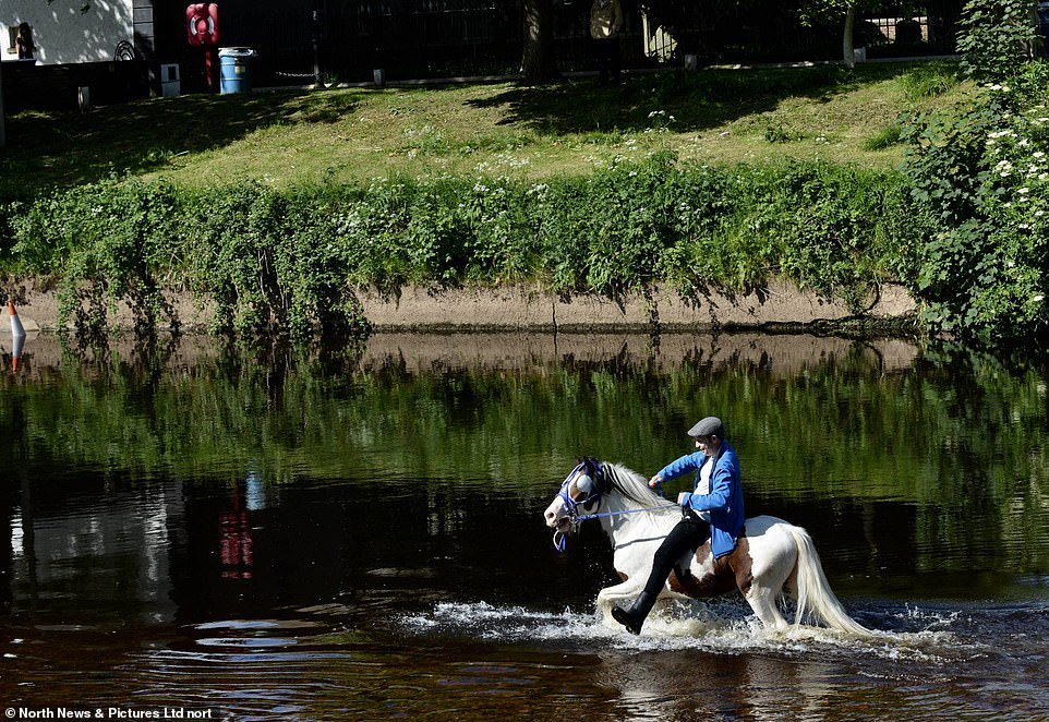 أكبر معرض للخيول فى بريطانيا (11)