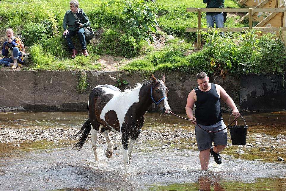 أكبر معرض للخيول فى بريطانيا (9)
