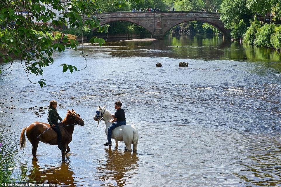 أكبر معرض للخيول فى بريطانيا (7)