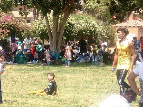 الأطفال يستمتعون بركوب العجل والطفطف فى حديقة الفسطاط (1)