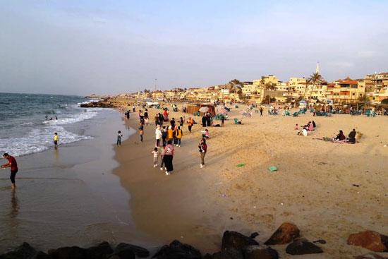 شواطئ شمال سيناء (3)
