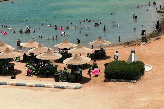 شواطئ البحر الأحمر (5)