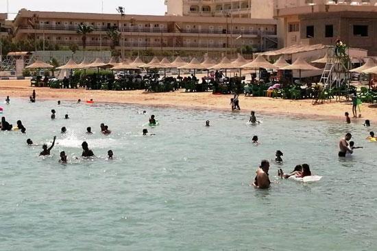 شواطئ البحر الأحمر (4)
