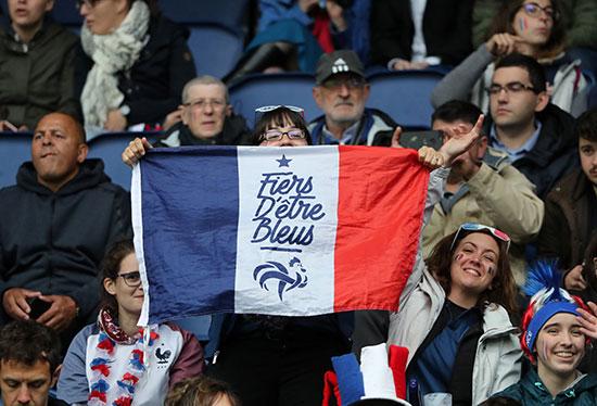 الأعلام الفرنسية فى المدرجات