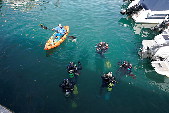 Divers cleaning coast of Spain from waste and plastic