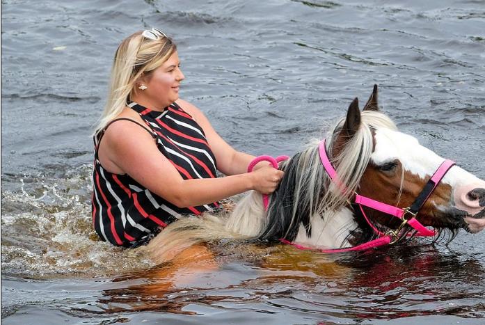 معرض الخيول أبلبي