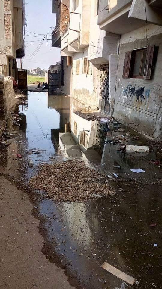غرق الشوارع بالصرف الصحى (6)
