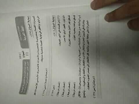 نموذج إجابة اللغة العربية (1)