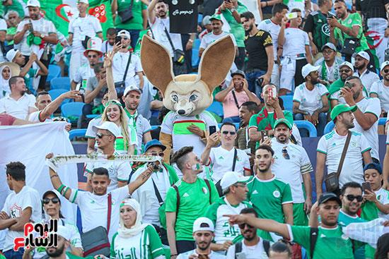 جماهير الجزائر (7)