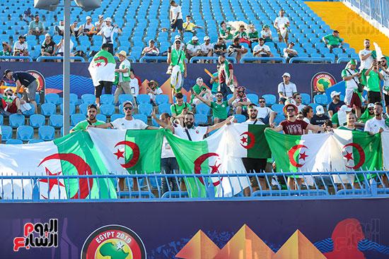 جماهير الجزائر (14)