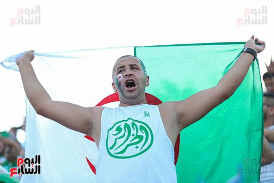 جماهير الجزائر (6)