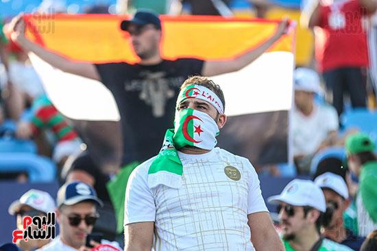 جماهير الجزائر (13)