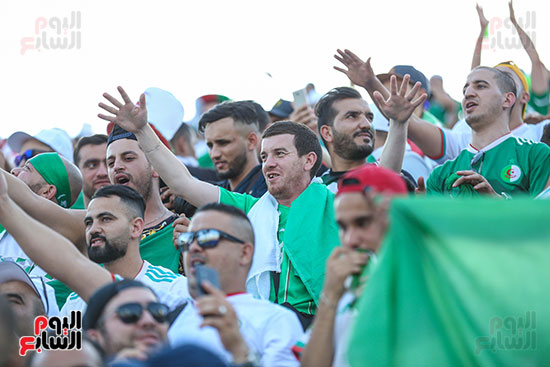 جماهير الجزائر (5)