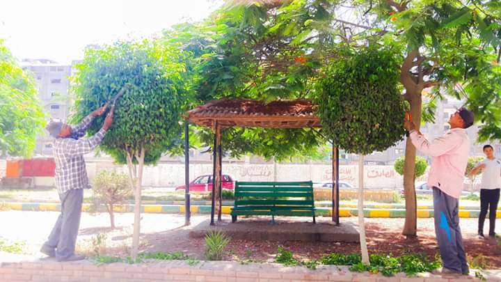 حدائق المنصورة (5)
