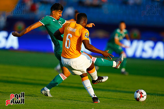 الجزائر وكوت ديفوار (6)