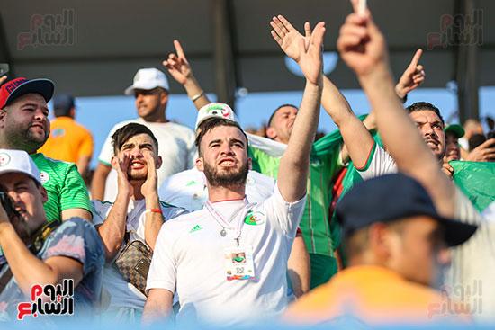 جماهير الجزائر (12)