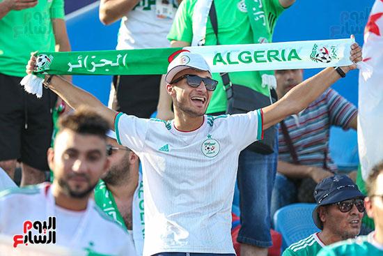 جماهير الجزائر (16)