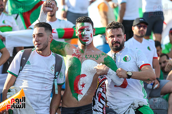 جماهير الجزائر (25)