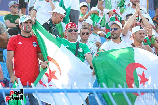 جماهير الجزائر (21)