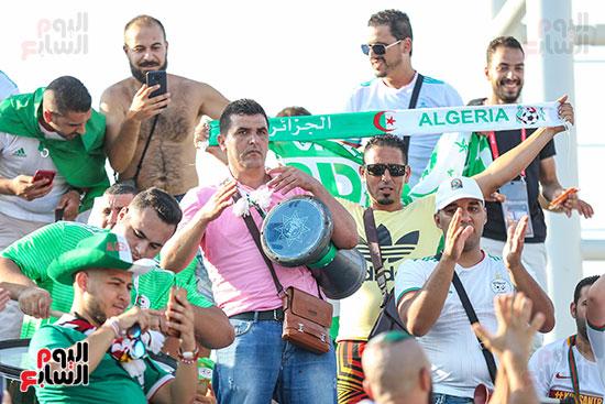 جماهير الجزائر (19)